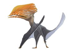 Pterosaurs are an extinct diverse group of flying reptiles that lived in the Age of Dinosaurs Creature Concept Art, Creature Design, Fantasy Creatures, Mythical Creatures, Reptiles, Jurassic Park World, Extinct Animals, Dinosaur Art, Fantasy Monster