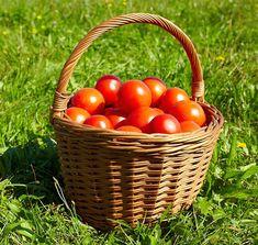 Gardening, Vegetables, Lawn And Garden, Vegetable Recipes, Veggies, Horticulture