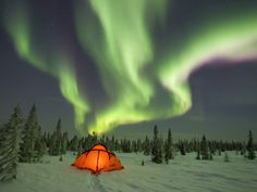 Camping Under the Northern Lights, Boreal Forest, Canada