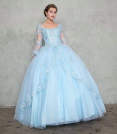 c349d88f469 Appliqued A-line Ball Gown with Sheer Long Sleeves