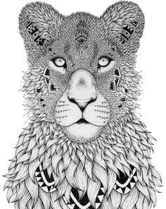 A&M LIONS TIGERS AND BEARS.....DOODLE YOUR HEAD OFF! :)