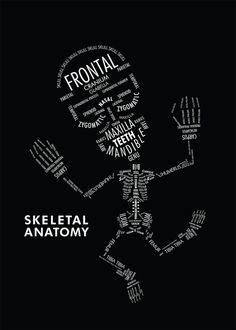 Skeleton Man, fun way to learn