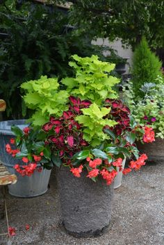 Great examples of container plantings for shade. By Designer Deborah Silver of Dirt Simple.