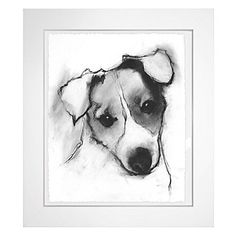 Jack Russell Study: With modern flair, artistically rendered black and white sketches of our favorite pets layer our walls with personality.