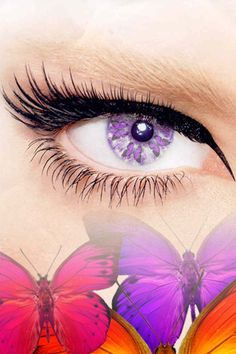 Purple butterfly eye contacts