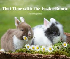 I may have told you this story before about Easter. I apologize if I have, raising boys has helped me to lose my mind. But its Easter so I want to share an Easter memory. When I was young, I rememb…