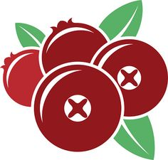 cranberry-vector-vector-id589575818 (425×406)