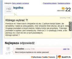 Którego chłopaka wybrać Funny Sms, Wtf Funny, Polish Memes, Zero The Hero, Best Memes, Poland, Everything, Haha, Quotes