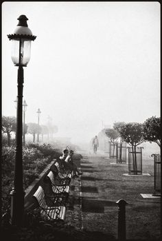 Fred Lyon captured misty, melancholy San Francisco over a period of 75 years, and the results are absolutely captivating Lion, Cannery Row, Foto Real, San Francisco City, Image Makers, Romanticism, Second World, All Art, Photo Book
