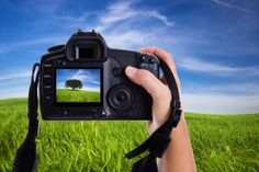 Photo Basics Lesson: How to check the exposure
