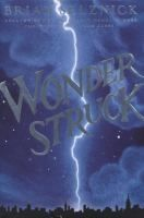 Wonderstruck by Brian Selznick. Search for this and other summer reading titles at thelosc.org.