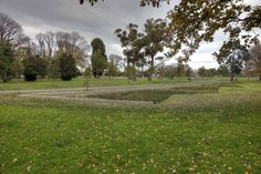 Image result for bioretention pond amphitheatre