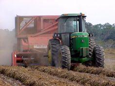 peanut harvesting equipment - Google Search