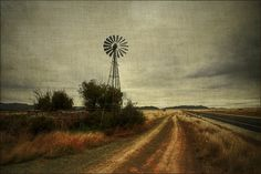 South African Windmill - They are everywhere!