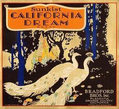 California Dream Orange Crate Label Placentia CA | eBay