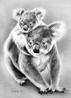Koalas by ArtbyKerli