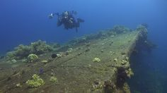 TRUK Lagoon (2)    Rio de Janeiro Maru Underwater, Beautiful, Rio De Janeiro, Under The Water