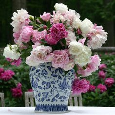 Peony trees. These looks amazing.  Everything you need to know to care for your peony tree