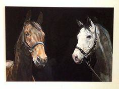 Private double equine commission on canvas by Tony O'Connor whitetreestudio.ie