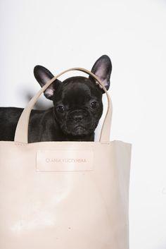 Лучших изображений доски «Bags»  34   Satchel handbags, Fashion bags ... b8821cb1e7b