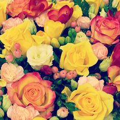 #pallotsflorist #cheapside #jersey Cheap Sides, Rose, Flowers, Plants, Pink, Roses, Flora, Plant, Royal Icing Flowers