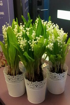 Uroczy element dekoracji stołu, parapetu czy kominka na majowym weselu  Lily of the Valley Bouquet