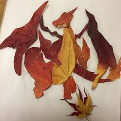 Charizard made from autumn leaves