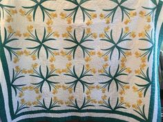 Gorgeous applique quilt I rescued. It was filthy but cleaned up nicely.A real beauty. Real Beauty, Applique Quilts, Clean Up, Daffodils, Blanket, Antiques, Vintage, Antiquities, Blankets