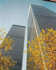 Looking up at the Twin Towers from the base of the U. Customshouse in April 1996 World Trade Center Nyc, Trade Centre, New York City, Remembering September 11th, North Tower, Tower Building, Iconic Photos, Lower Manhattan, World Trade