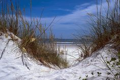 Crescent Beach, Near St. Augustine Florida