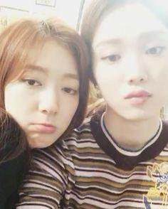 park shin hye y lee sung kyung