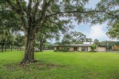 38 Best Horse Farms For Sale In Ocala Fl images | Horse