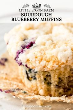 Sourdough blueberry muffins with a crumble topping are seriously amazing! They are so easy to make with your sourdough starter discard. Sourdough Starter Discard Recipe, Sourdough Recipes, Sourdough Bread, Crumb Topping Recipe, Crumble Topping, Blue Berry Muffins, Dessert Recipes, Desserts, Sweet Bread