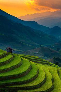 """macawtravel: """"Mù Cang Chải District, Vietnam """""""