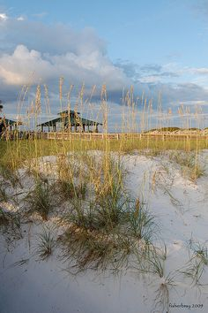Sand Dunes at Beasley Park in Ft. Walton Beach, Florida by fisherbray