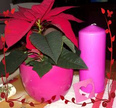 flowers Pillar Candles, Flowers, Royal Icing Flowers, Floral, Taper Candles, Florals, Flower, Bloemen, Blossoms