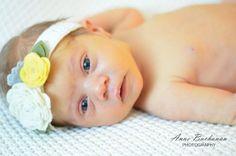 Newborn Photos - Anne Buchanan