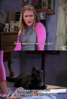 Salem is my spirit animal.