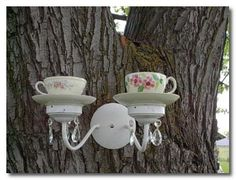 teacup bird feeder teacup bird feeder teacup bird feeder