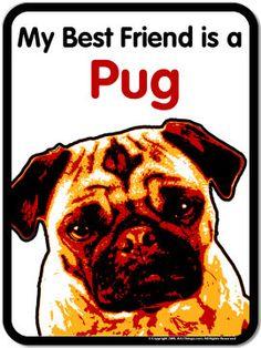 My Best Friend Pug