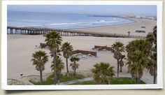 Image Detail for - Contact The Hueneme Beach Festival