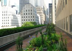 Rockefeller Center's Rooftop Gardens are a Hidden Urban Treasu...