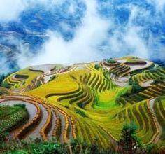 http://www.chinese-tools.com/jdd/public/documents/travel/guilin-longsheng.jpg