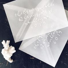 In the studio with @paigetuzee_designs white calligraphy on vellum envelopes ✨