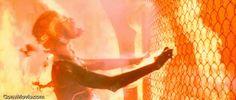 Photo of Terminator 2: Judgment Day (1991)