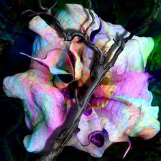 Large Pink and Purple Wall Art,Surreal Flower Picture,Pink,Blue Photograph,Angel's Trumpet Photo,Fantasy,Gothic Art,Abstract Art,Rainbow Art