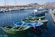 Las Galletas Tenerife, Paella, Biscuits, Teneriffe
