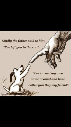 """A beautiful and comforting thought. As it is said """"all dogs go to heaven."""" Source by dog dog memes dog videos videos wallpaper dog memes dog quotes dogs dogs pictures dogs videos puppies puppy video I Love Dogs, Puppy Love, Cute Dogs, Animals And Pets, Cute Animals, Fluffy Animals, Pet Sitter, Pet Loss, Animal Quotes"""