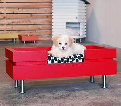 The Low Flat is one of several Modular Dog bed and house designs. This is one of my original bed designs and the Low is perfect for most small to