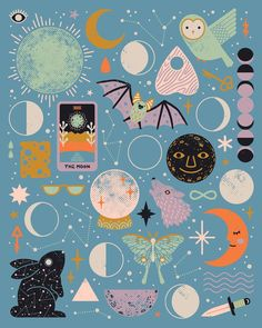 moon astrology stars rabbit bat owl constellation